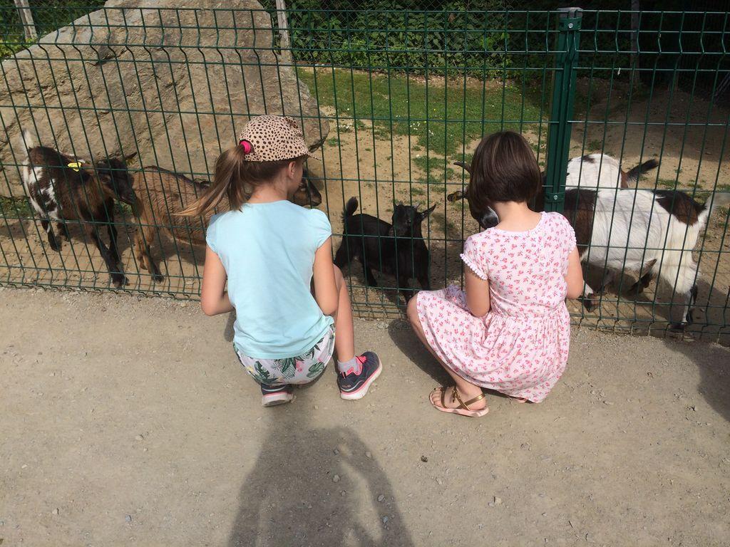 Obisk mini živalskega vrta SiKaLuZOO